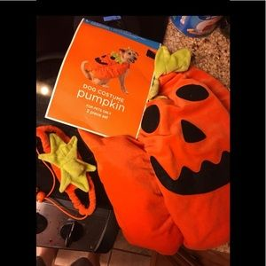 NEW Pet Costume Pumpkin Jacket and Hat Size Large